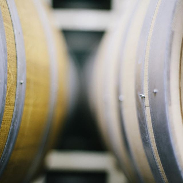 Just waiting for magic to happen #oakbarrel #nofilter #film #wine