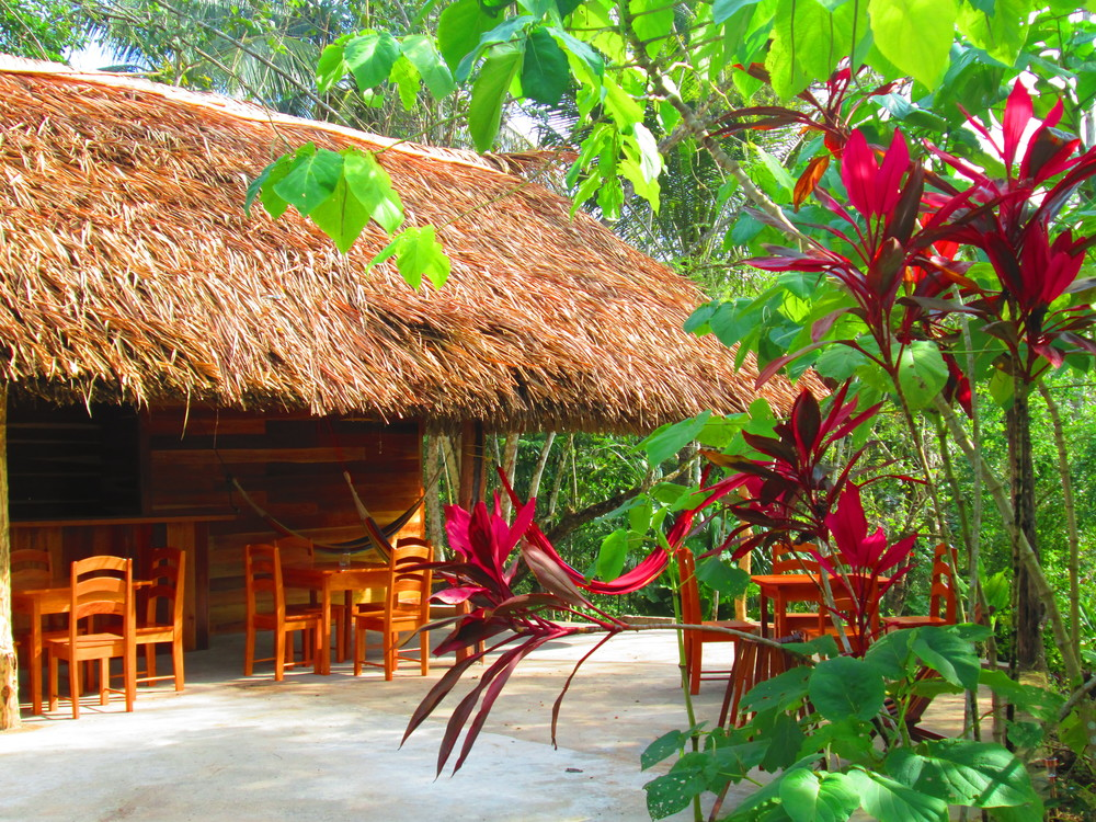 Dining Thatch Patio.JPG