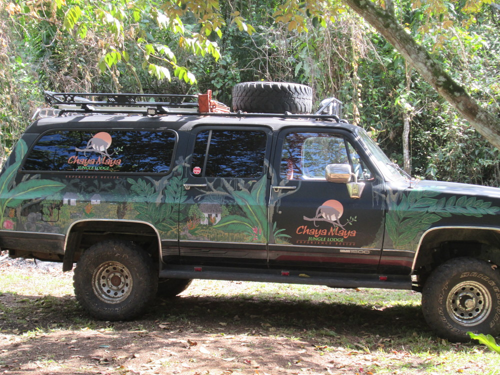 Jungle Truck.JPG