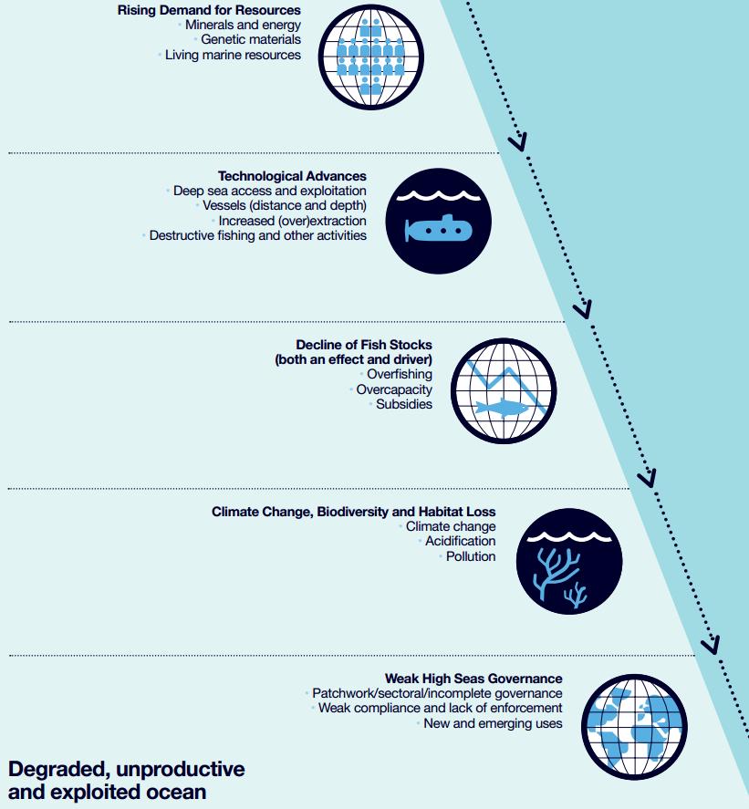 Ocean Decline