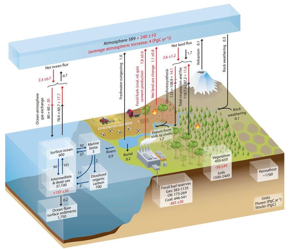 IPCC 1
