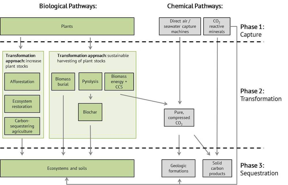 CDR pathways