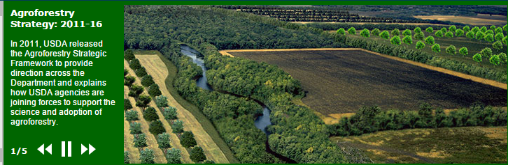 Government agencies area already supportingagriculture strategies that hold significant carbon sequestration potential. Take the USDA's agroforestry strategy, for example.