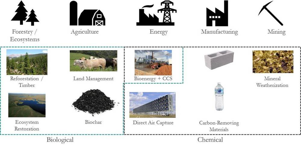 Options for carbon removal span numerous industries.