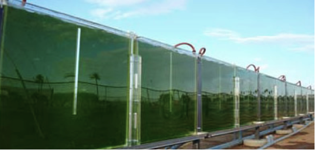 Via: http://energy.gov/eere/bioenergy/production   Using captured CO2 to enhance the growth of algae biofuels (like in the above reactors at Arizona State University) would get a $35/t tax credit under the Heitkamp-Whitehouse CCUS proposal in the Senate.