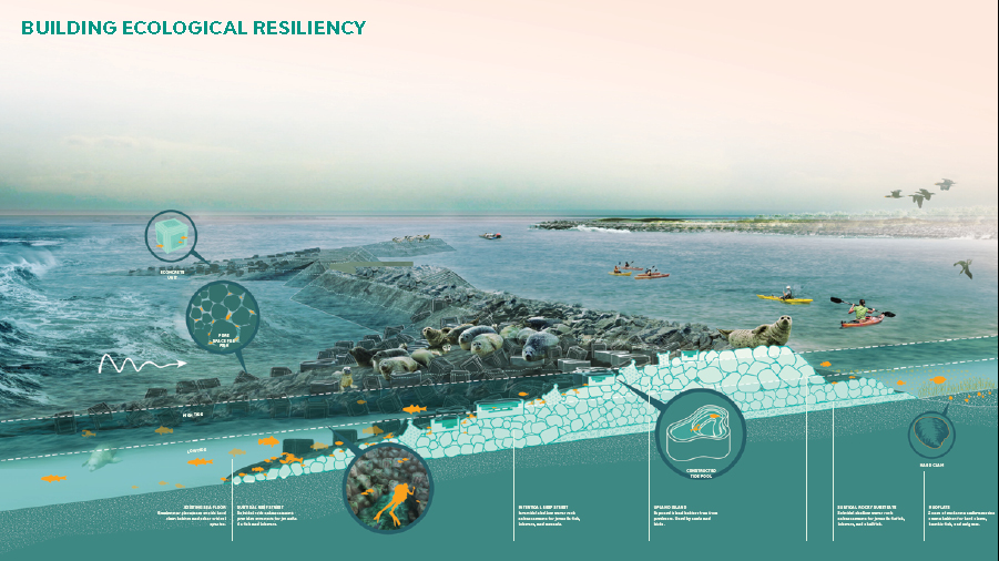 "Source:  Rebuild by Design  – ""living breakwaters"" project in Staten Island"
