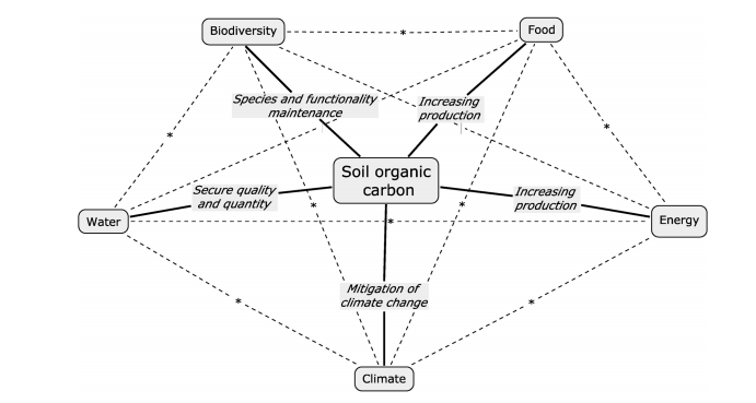 Soil organic carbon (SOC) offers climate as one of several interconnected benefits. Each of these necessary elements is integrally linked and dependent upon preserved and even enhanced soil carbon ( International Institute of Tropical Agriculture  2015).