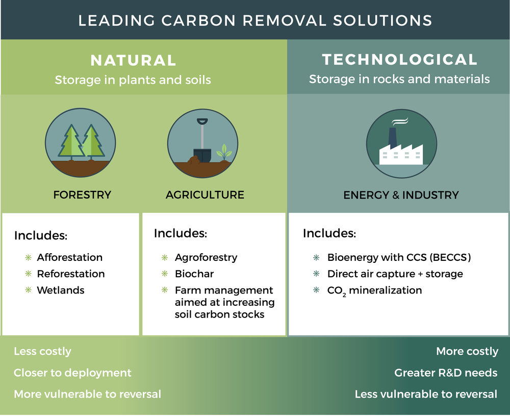 Carbon Removal Solutions