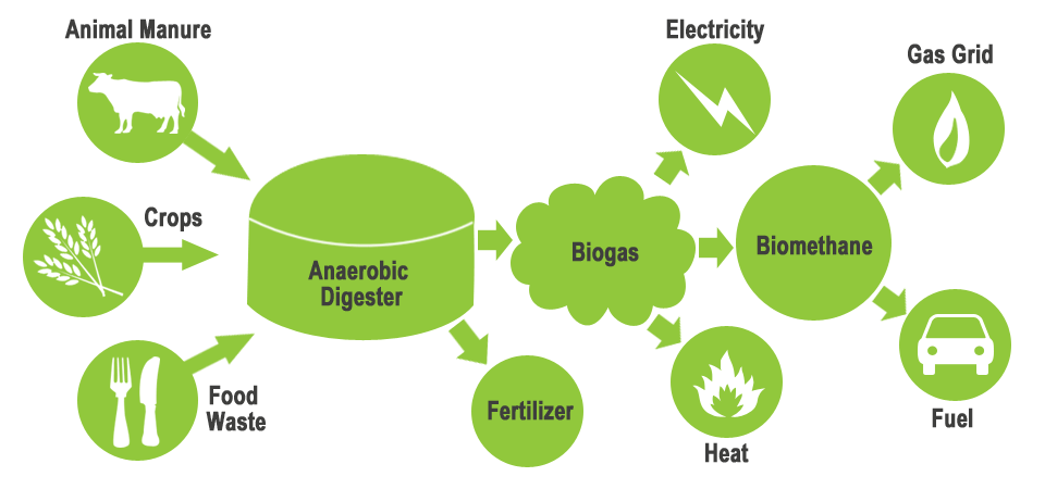 Figure 3: The diagram above demonstrates the manner in which an anaerobic digester can collect waste carbon from various sources on the farm to produce valuable fertilizers (bio-slurry) and energy (biogas and methane), while also reducing carbon emissions. (Source:  GLW Energy )