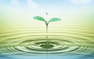 tranquility-water-opi-huzur-verici.jpg