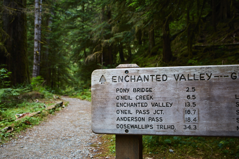 Enchanted Valley Olympic National Park, WA - The Traveling Fork