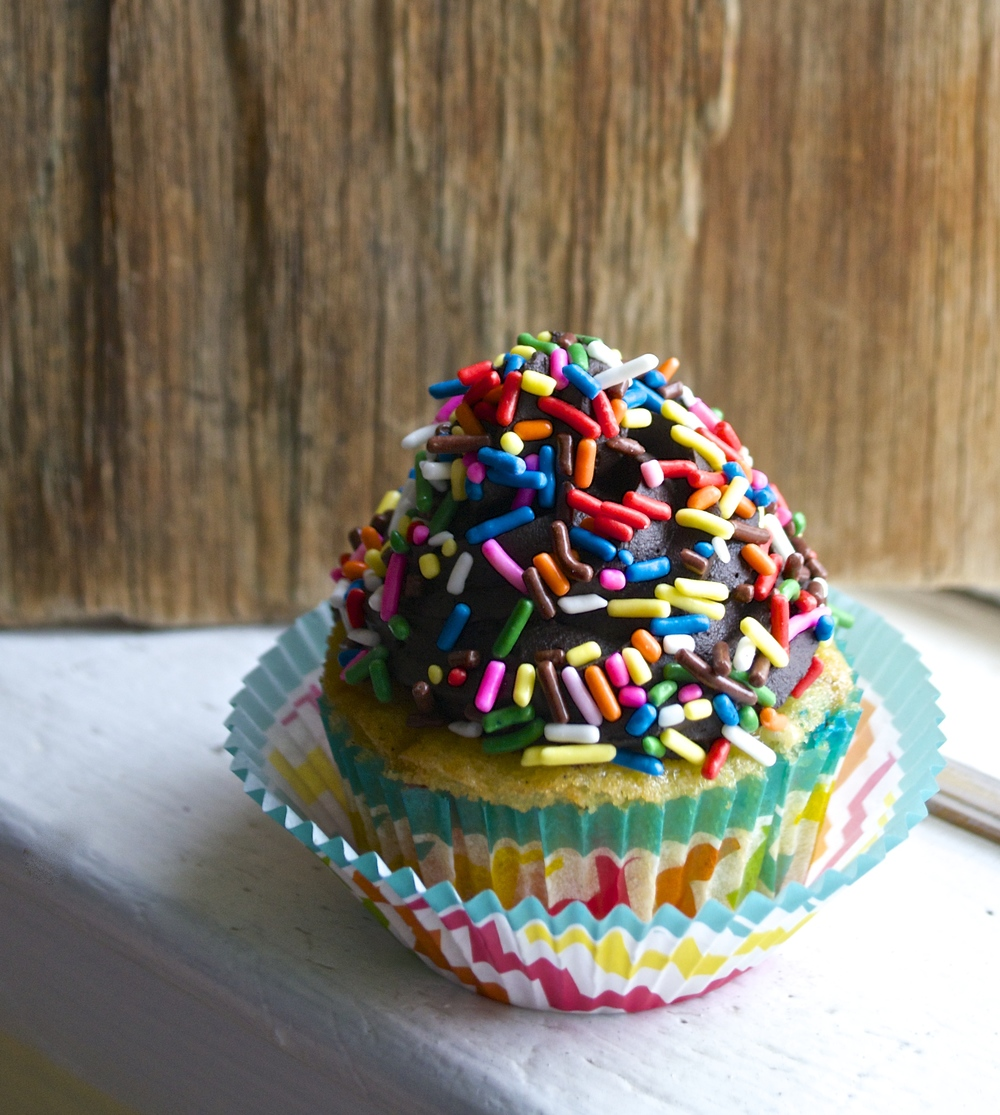 Sprinkle Explosion Vanilla Cupcakes with Chocolate Frosting {Dairy Free} | Pale Yellow