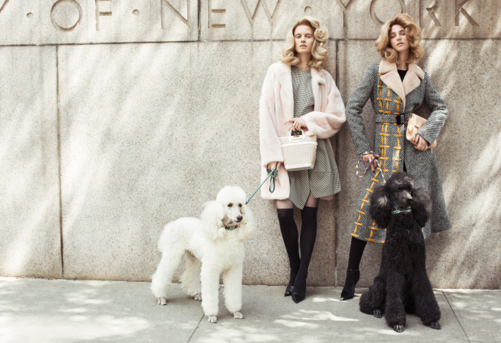 Elle Singapore , DogDays