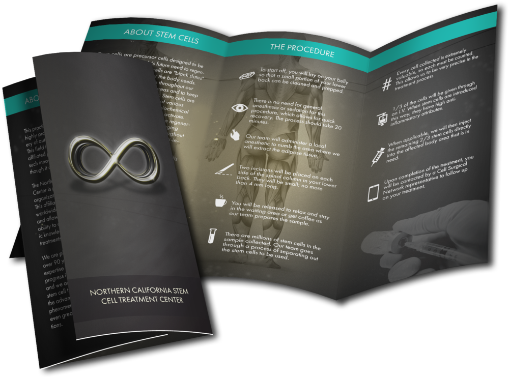 Printed business brochure