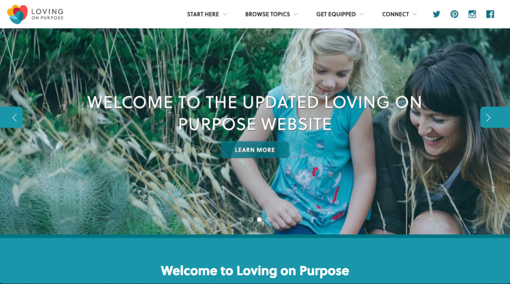 Loving On Purpose Non-Profit Website snaapshot
