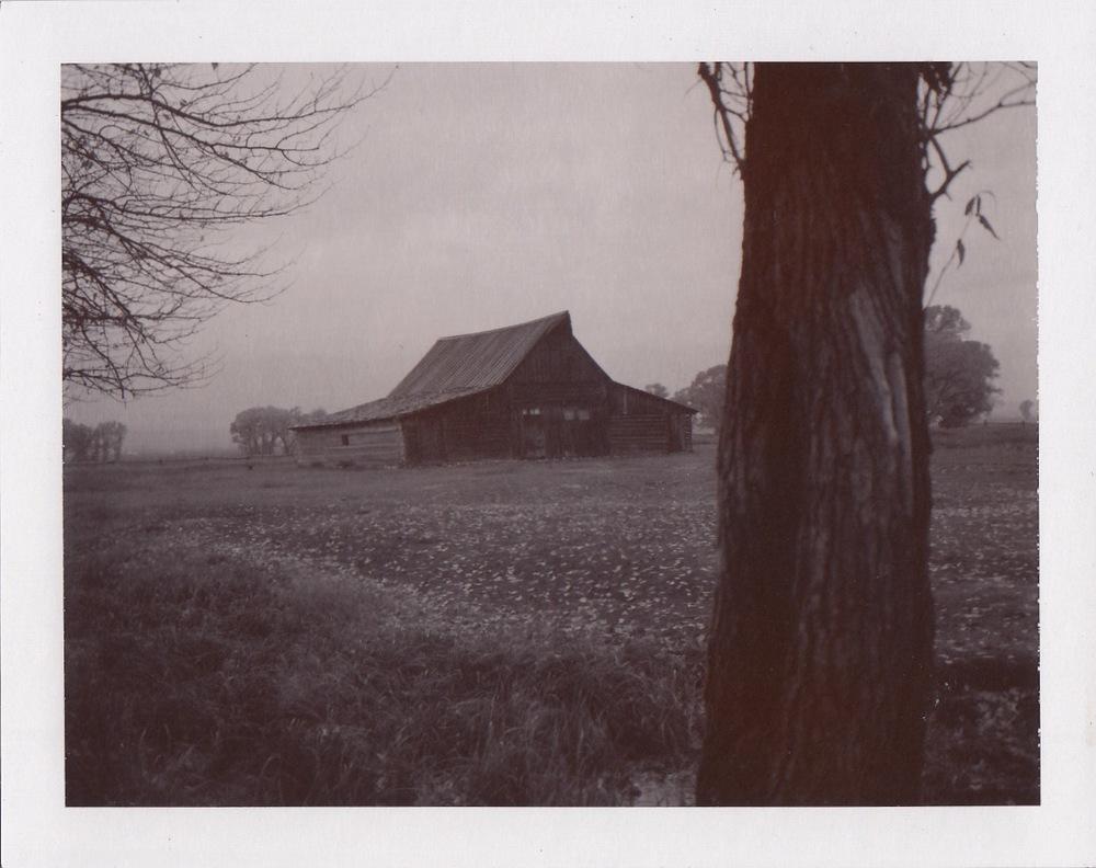 WY_PolaroidSepia100_0002.jpg