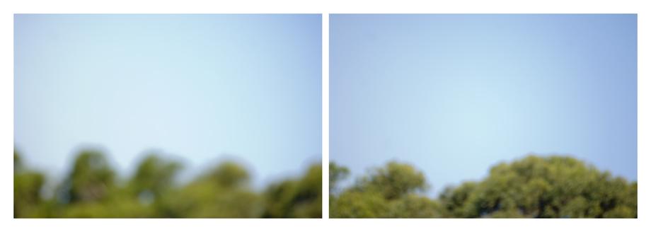 landscape 1.jpg