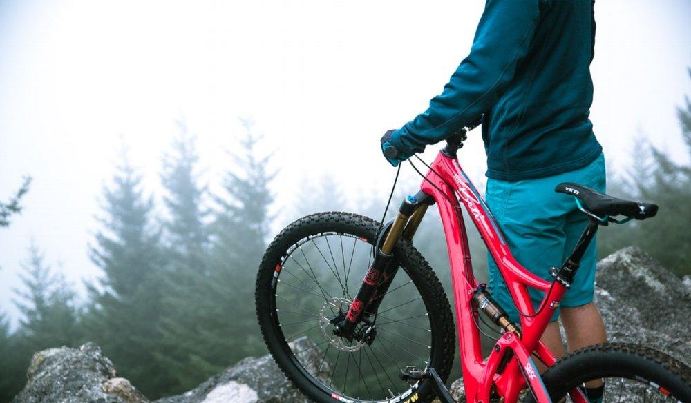 Wheat Ridge Cyclery: 15% off