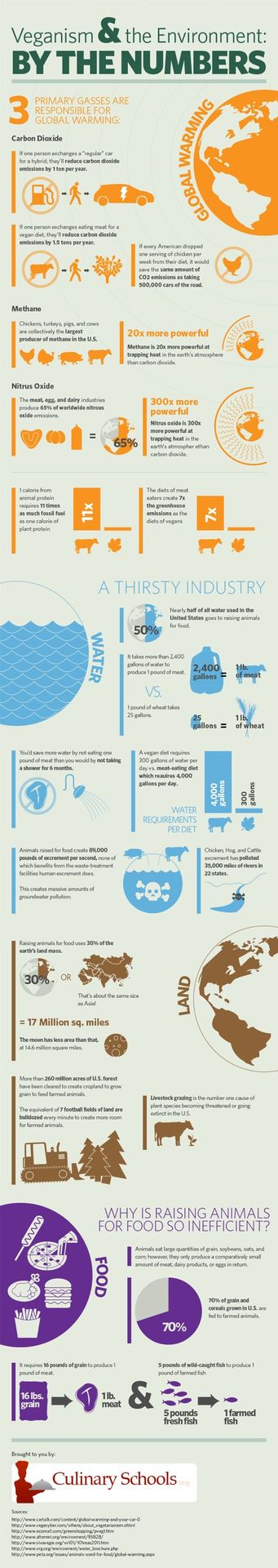 mothernaturenetwork :     A graphic look at the amount of water and fuel it takes to raise animals for food vs the amount it takes to raise plants for food, plus additional environmental information, may just have you  rethinking your meat consumption .