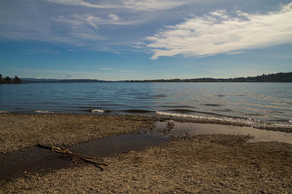 Views of Mt Ranier over Lake Washington