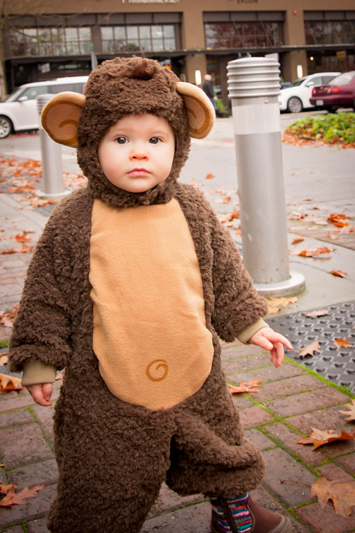Miss Monkey ready to grab some candy