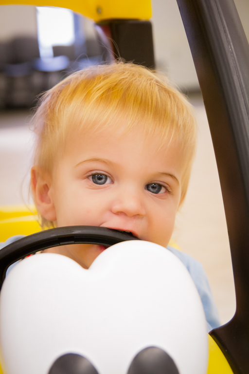 Benji riding the car