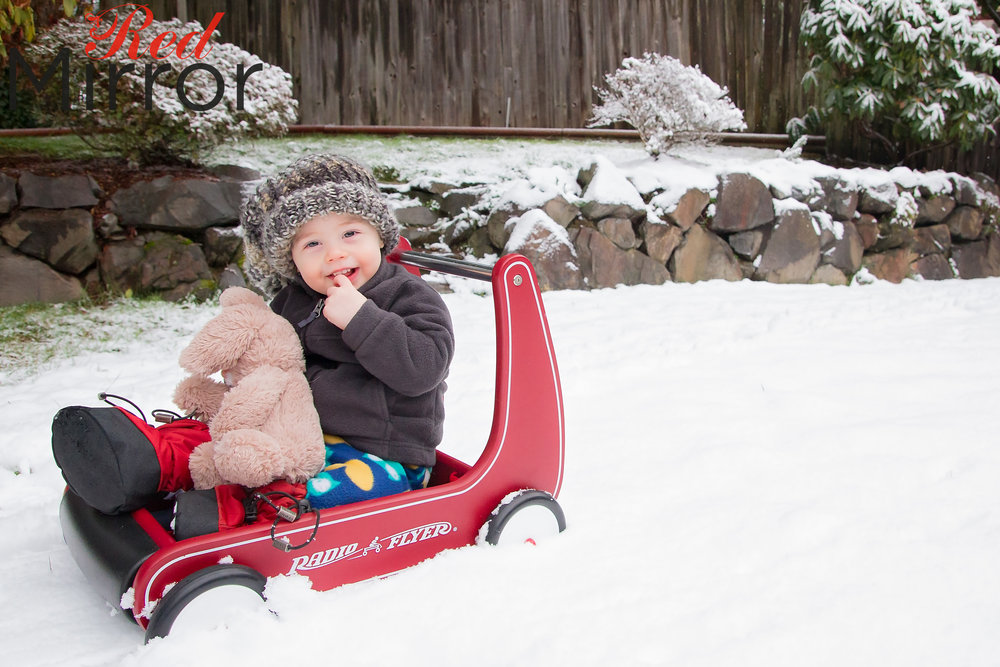 Little boy sat in a Radio Flyer wagon, holding a cuddly bunny with his finger in his mouth