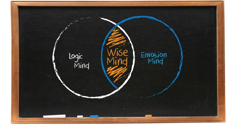 wise-mind-dbt