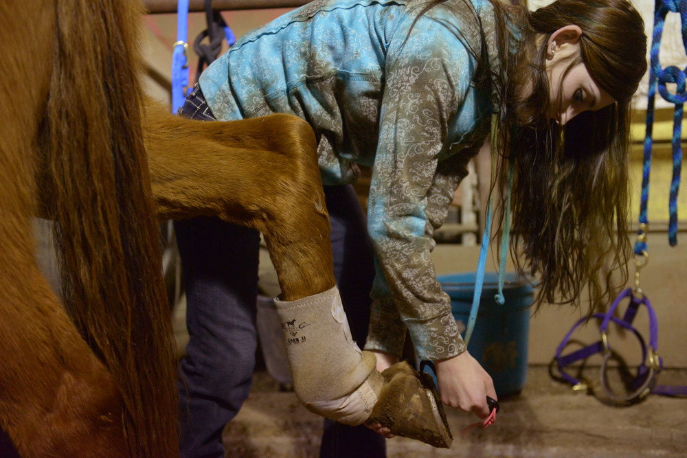 "During a competition,  Amee scrapes mud off the bottom of Banjo's hoof to help with his traction. Banjo is much calmer when he's around Amee's other horse, Pistol. ""She's his girlfriend,"" Amee says."