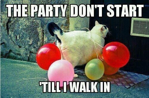 Party chat!