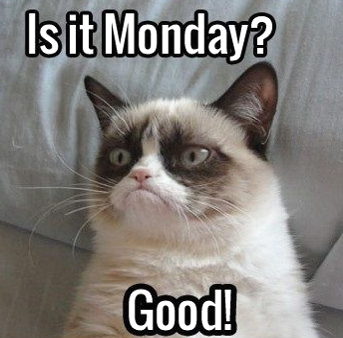 Happy Monday!?!?  Grumpy Cat says No.   The Cheeky Chats  say YES!