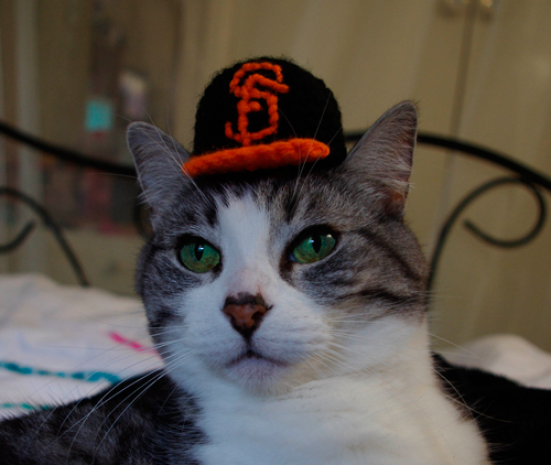 In Honor of the World Series.  Cute Cheeky Chats in Hats!