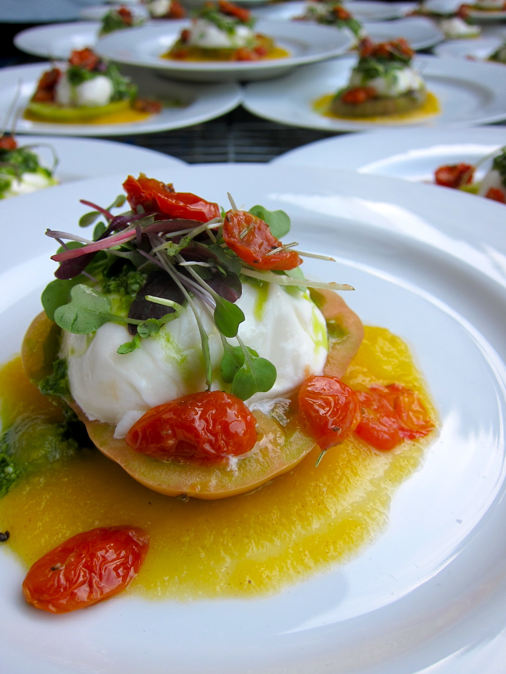 Plated Burrata and Heirloom Tomato.jpg