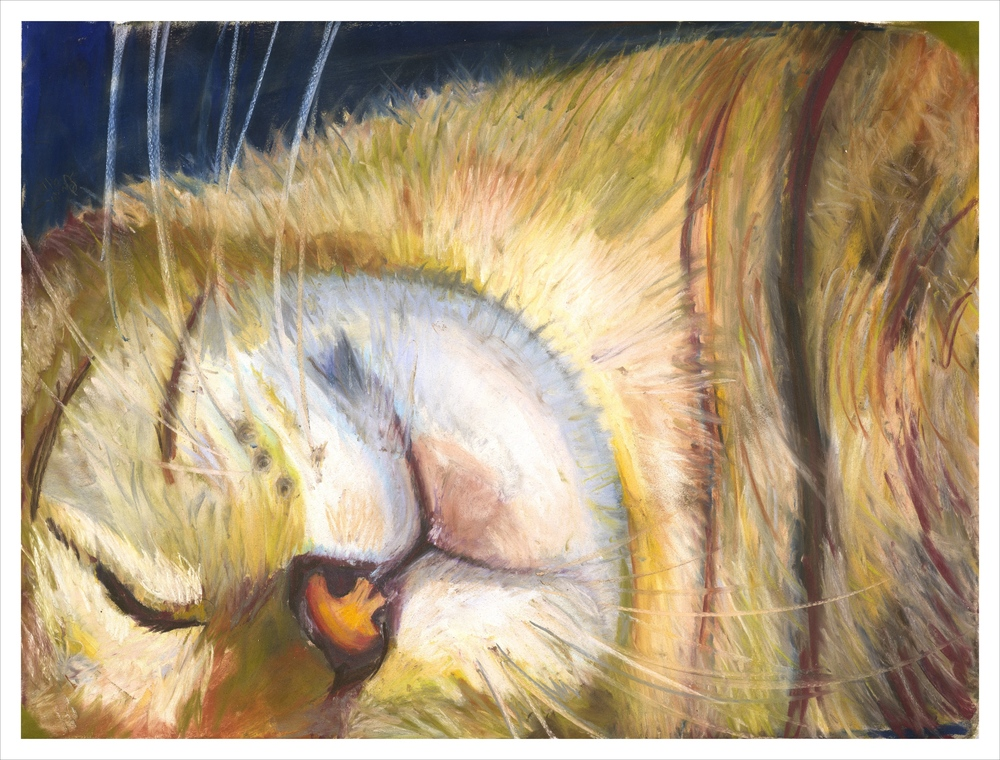 sleeping cat a1998 B pp12 9600 ic canvas per 18x24+.5.jpg