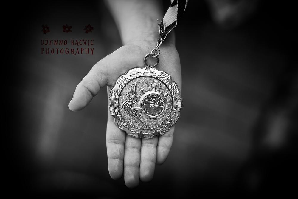 CHC-2014-award.jpg