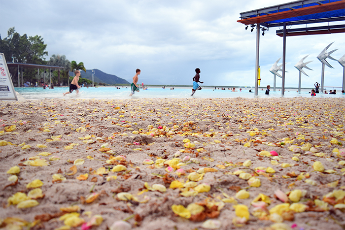 Children running along the edge of Cairns' saltwater lagoon. The flowers on the sand have fallen from the Cassia (yay!) trees that surround the water.