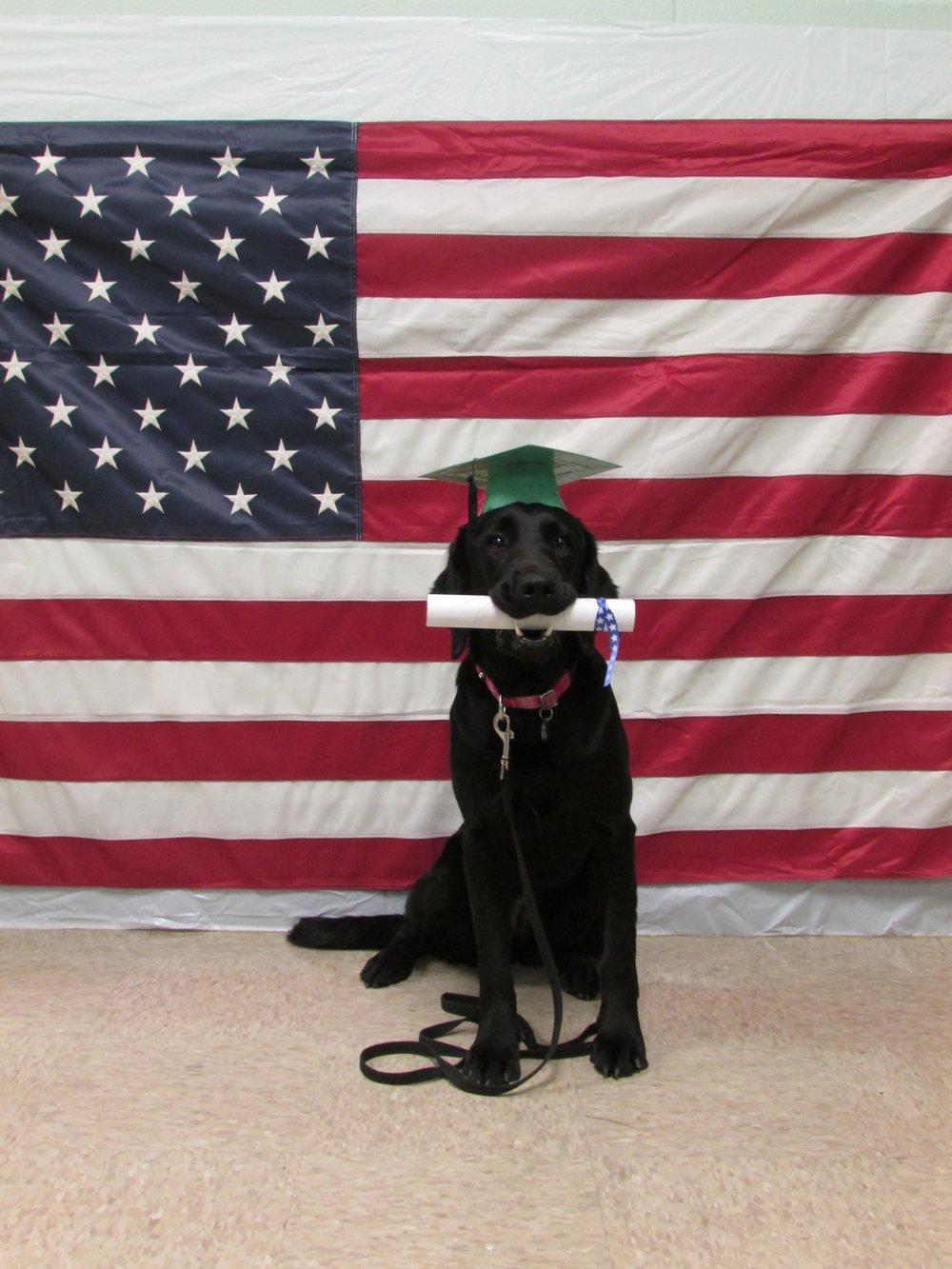 Lynn flag and diploma 1 2017.jpg