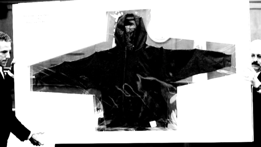 TrayvonMartin_evidence_hoodieframed_2.png