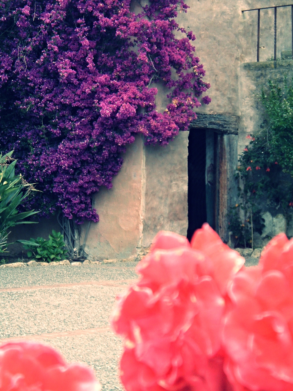 Outside a Spanish mission in Northern California, 2006