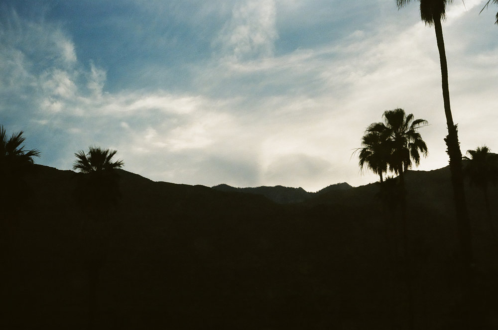 PLNT_MAG_COACHELLA_PHOTOS_12.JPG