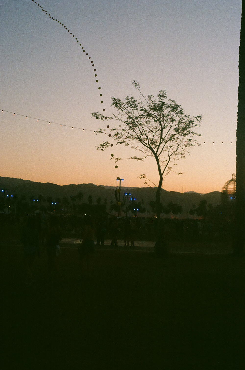 PLNT_MAG_COACHELLA_PHOTOS_24.JPG