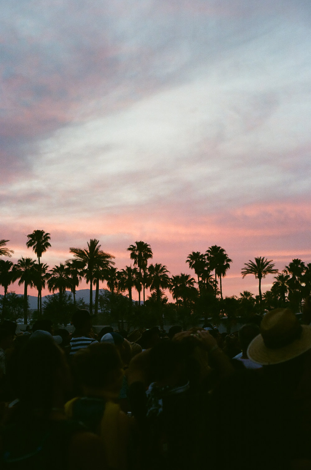 PLNT_MAG_COACHELLA_PHOTOS_30.JPG
