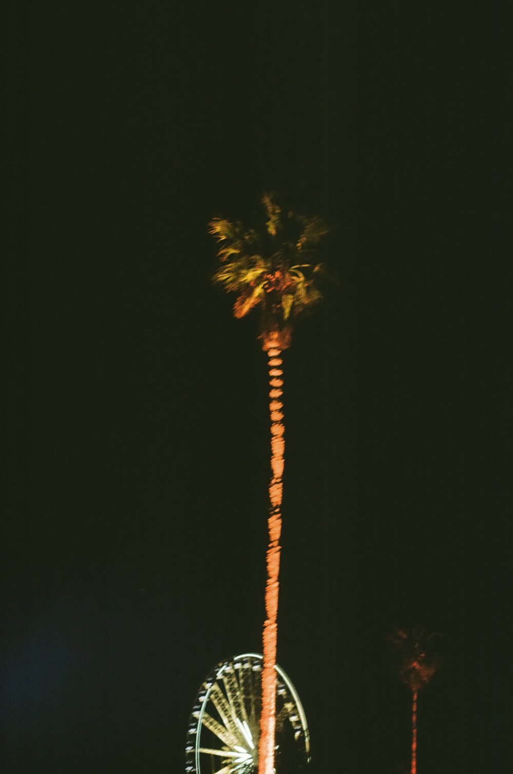 PLNT_MAG_COACHELLA_PHOTOS_33.JPG