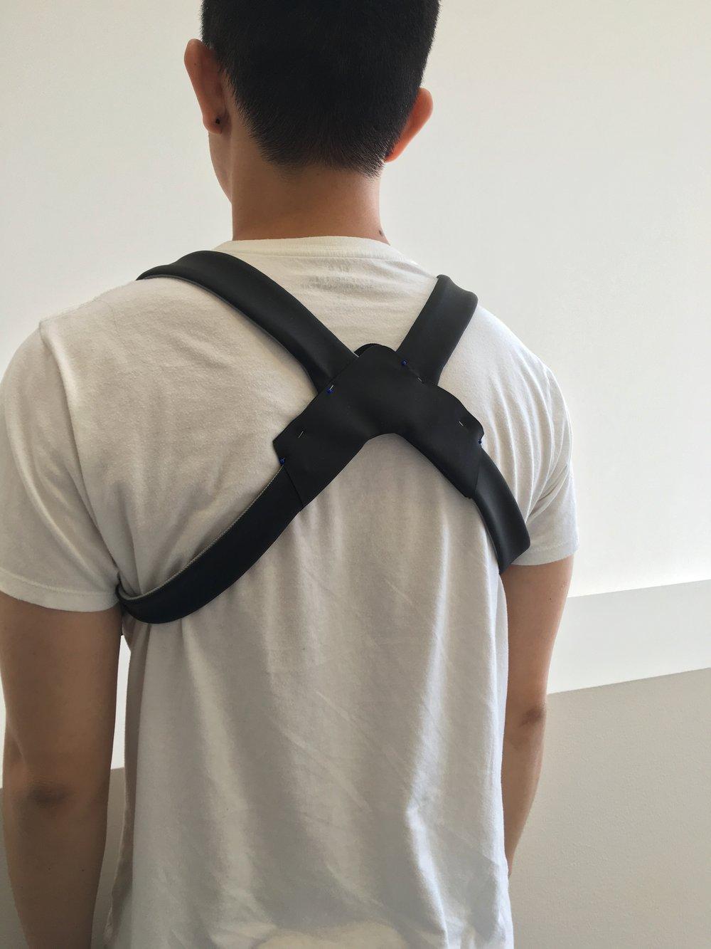 5Backbone.jpg
