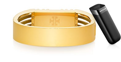 Image Source:  http://www.fitbit.com/toryburch