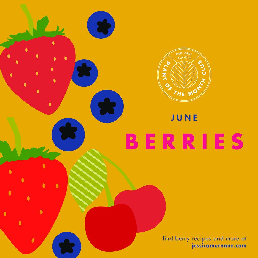OPP_PlantoftheMonth_0518_berriesFINAL.jpg