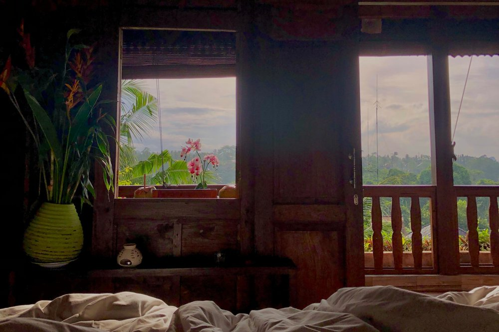 Morning views from my bed