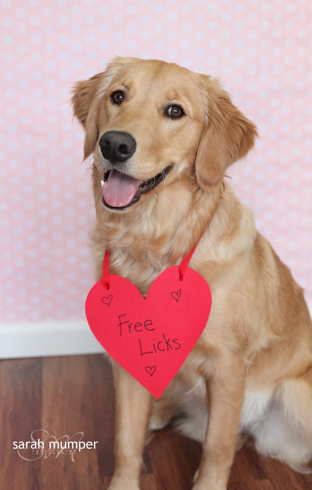 {Lucy's Valentine's Day}-2.JPG
