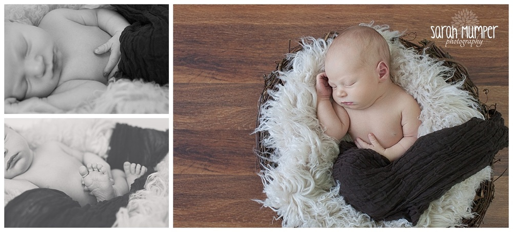 William - Newborn (7).jpg