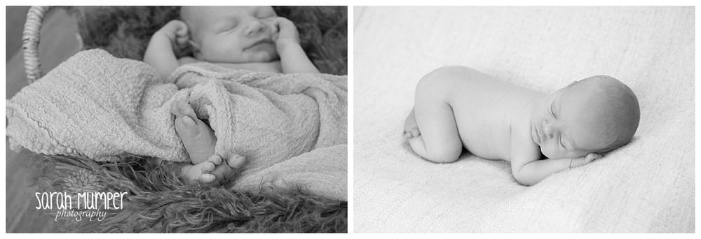 William - Newborn (8).jpg